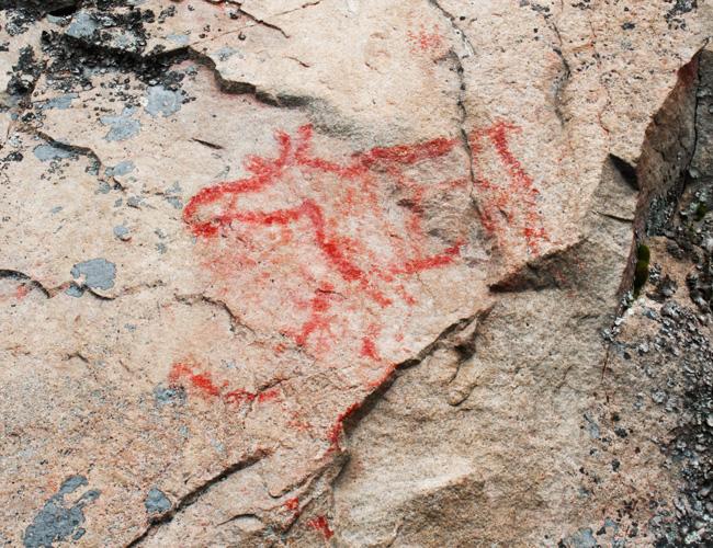 Kalliomaalaus hirvi
